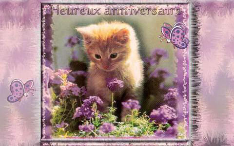 Carte anniversaire gratuite imprimer carte d 39 anniversaire - Images animaux a imprimer ...